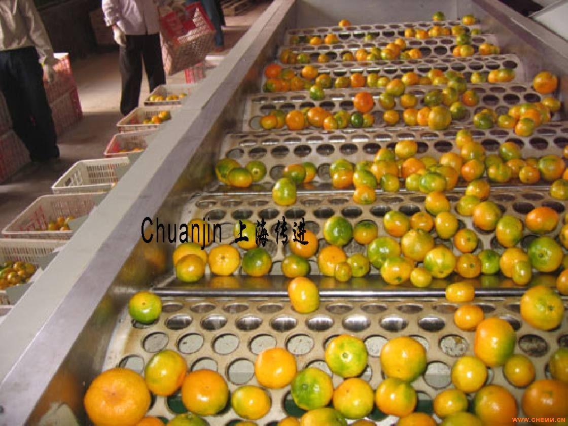 水果分级机