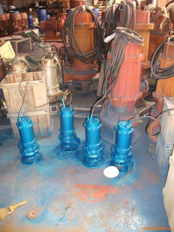 昌平污水泵销售维修/海淀污水泵修理换轴承机封修理电机图片