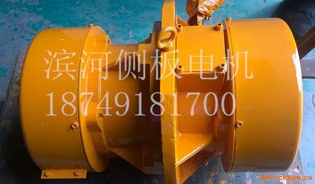 滨河振动电机XLA-20-4侧板电机型号齐全