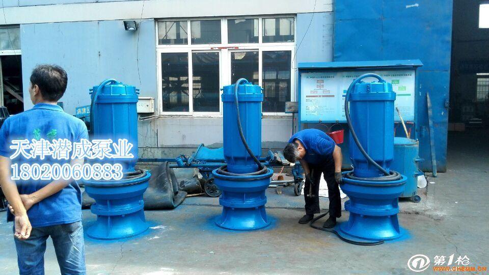 天津轴流泵厂家现货供应大流量,大功率潜水轴流泵