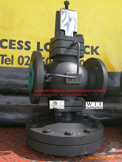 瓦特PRV2000先导隔膜式减压稳压阀