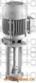 RICKMEIER泵R45/125 FL-Z-W-SAE2.1/2-R-SO