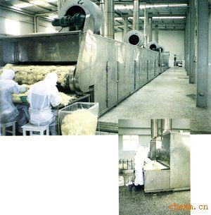 DWT脱水蔬菜干燥机